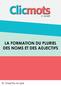 Clicmots3 pluriel